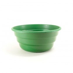 Coupes tradition Ø32 cm (x2) - vert brillant