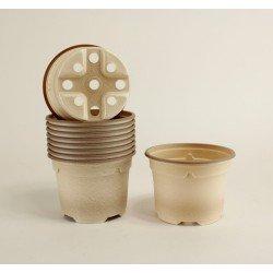 Pots ronds Ø10.5 cm (x10) - BIOCOMPOSTABLE