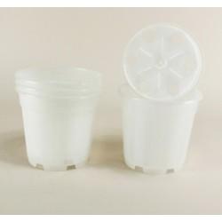 Pots pour orchidées Ø17 cm (x5) - incolore