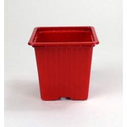 Godets 8x8x7 (x30) - rouge