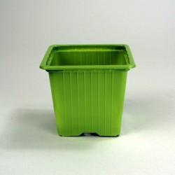 Godets 8x8x7 (x30) - vert bambou