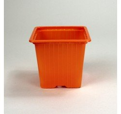 Godets 8x8x7 (x30) - orange