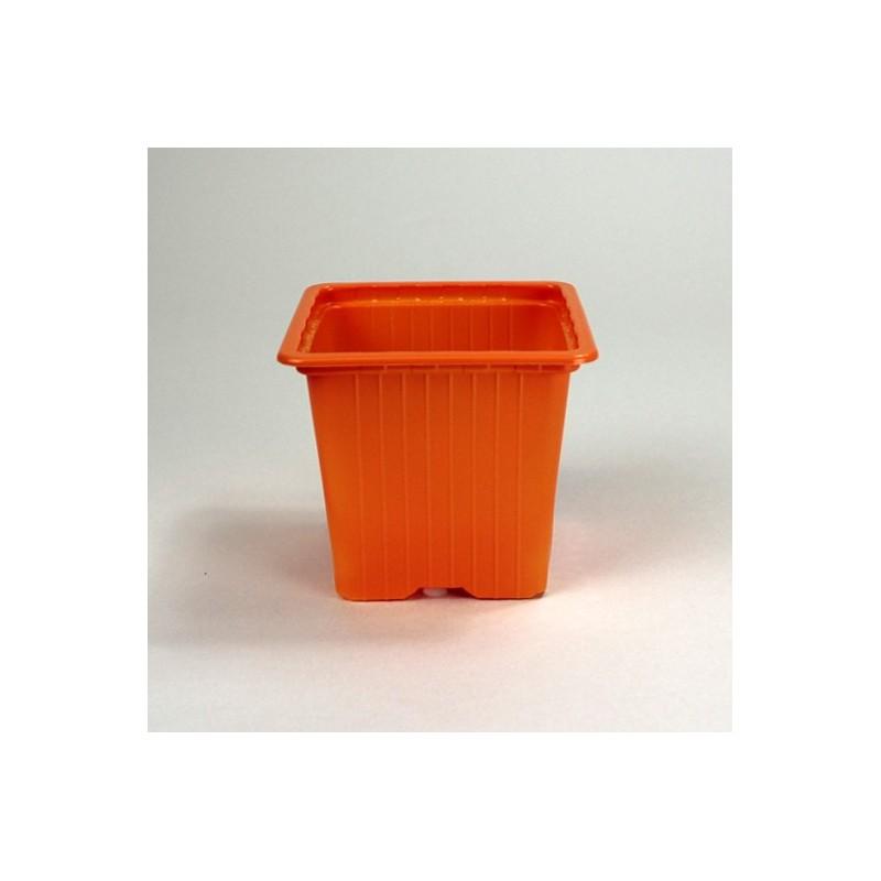 Godets 8x8x7 (x30) - orange
