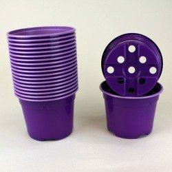 Pots ronds Ø10.5 cm (x20) - violet