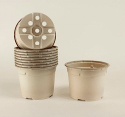 Pots ronds Ø12 cm (x10) - BIOCOMPOSTABLE