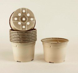 Pots ronds Ø13 cm (x10) - BIOCOMPOSTABLE