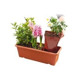 Jardinière Roma 50 + 6 pots 2.5 L - Coloris terre naturelle