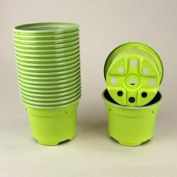 Pots ronds Ø9 cm (x20) - vert bambou