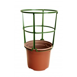 Pot rond Ø 12 cm + tuteur Sopafix (x5)